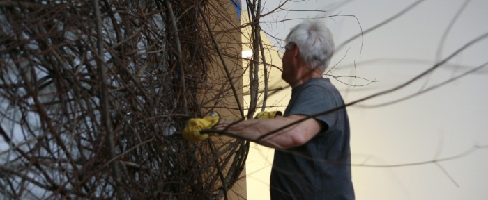 Patrick Dougherty Working